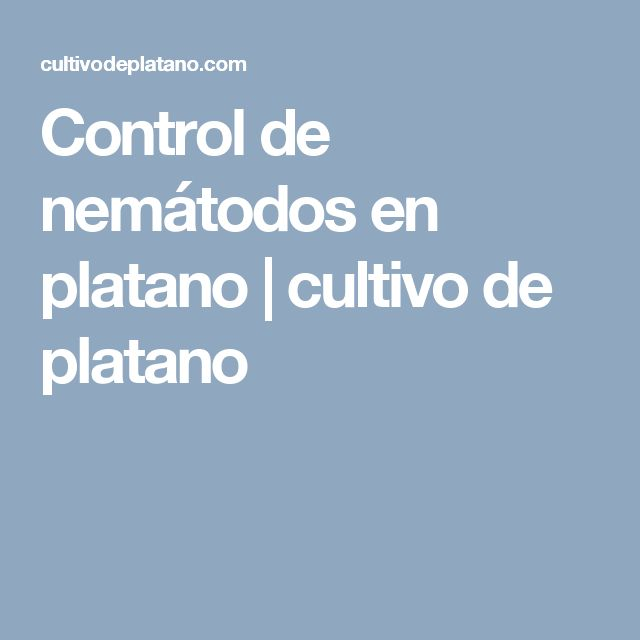 Control de nemátodos en platano   cultivo de platano