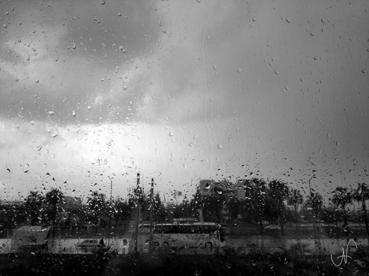 Window Drops & Rain