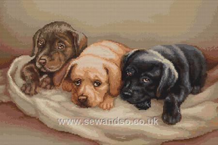 57 best Cross Stitch: Dogs images on Pinterest | Kreuzstichkits ...