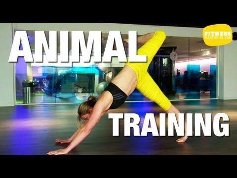 Fitness Master Class - Animal Training (+playlist) Doctissimo