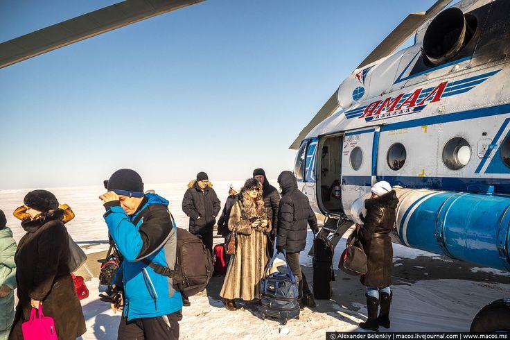 Воздушная маршрутка . Вертолёт как общественный транспорт http://kleinburd.ru/news/vozdushnaya-marshrutka-vertolyot-kak-obshhestvennyj-transport/