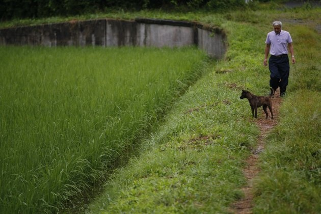 In this photo taken Friday, Aug. 19, 2011, Naoto Matsumura and his dog Aki return home after he checks on his rice paddy in Tomioka town, Fukushima, northeastern Japan. Nearly six months after Japan's catastrophic earthquake and tsunami, the 53-year-old believes he is the only inhabitant left in this town sandwiched between the doomed Fukushima Dai-ichi nuclear power station to the north and another sprawling nuclear plant to the south.   Matsumura, routinely drives around the town to feed…