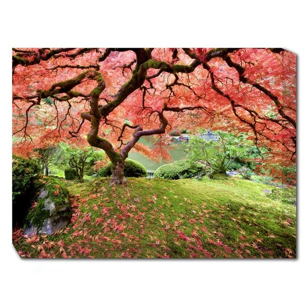 Japanese Wall Art >> This is going on my WishList! | Beautiful nature | Pinterest | Japanese maple, Japanese and Canvases