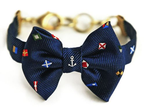 Is this bow tie cool or what?