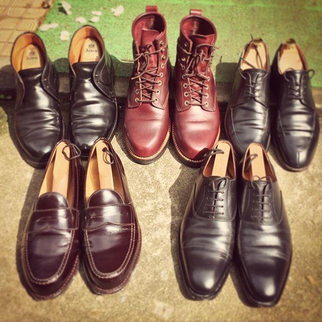 2016/06/14 09:27:56 bj16700 日光浴 #オールデン #安藤製靴 #大塚製靴 #ジャランスリワヤ #スコッチグレイン