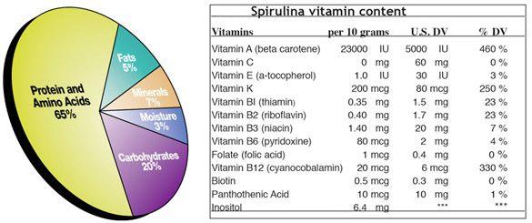 Composition #spirulina #spiruline #spiralps