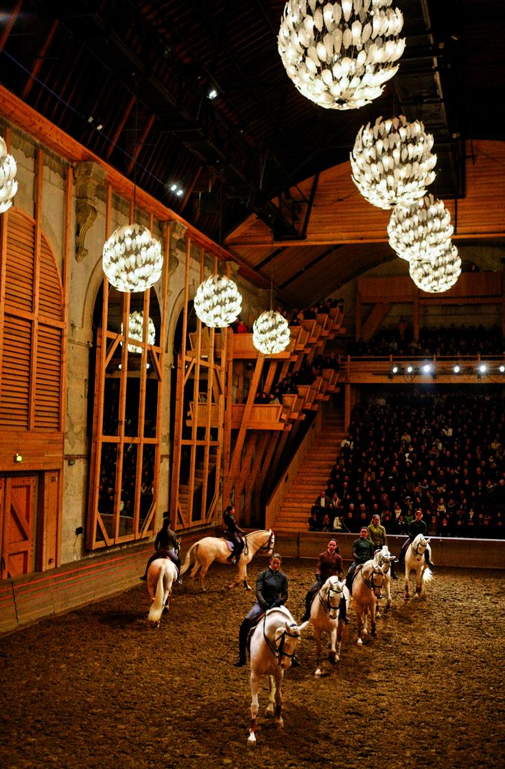Académie du Spectacle Equestre - Agathe Poupeney
