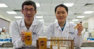 Μπύρα με το προβιοτικό βακτήριο Lactobacillus paracasei L26
