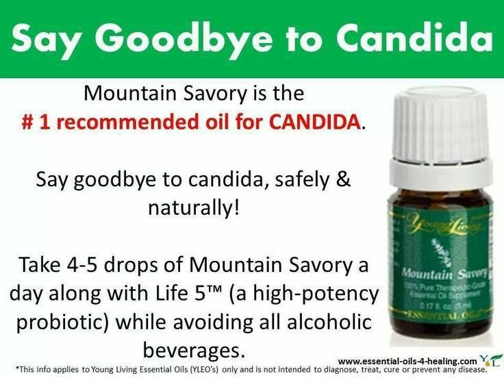 Candida Young Living Essential Oils; Carie Capps, Independent Distributor; Enroller ID # 1544827