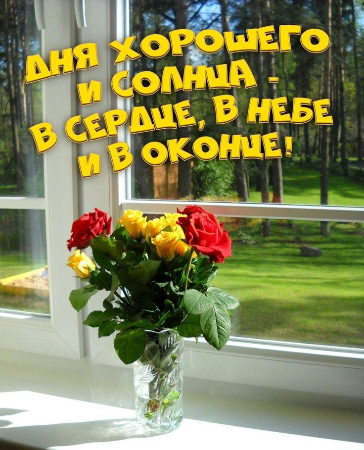 дела, светик доброе утро фото первый взгляд без