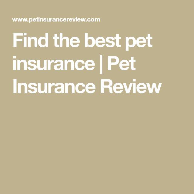 Find the best pet insurance | Pet Insurance Review