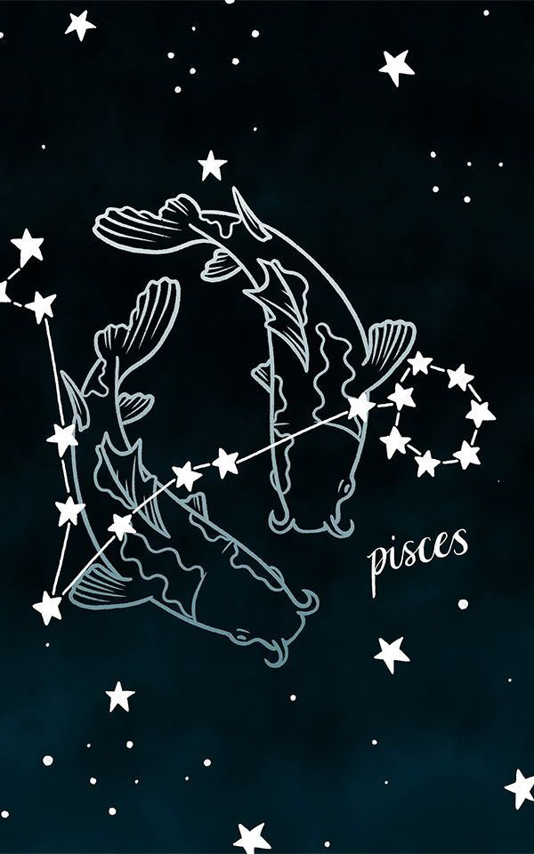 Constellation Wallpaper Decorate For Your Zodiac Sign Muralswallpaper In 2020 Constellation Art Constellations Star Constellations