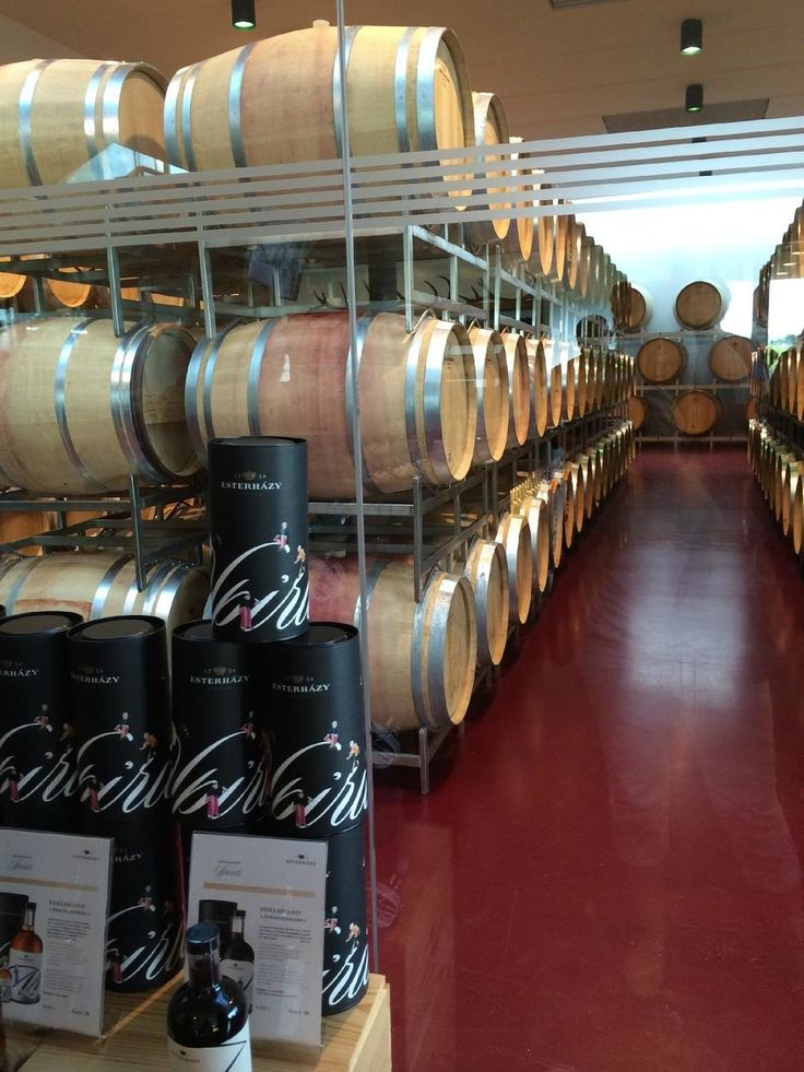 Esterhazy Winery, Trausdorf an der Wulka: See 5 reviews, articles, and 3 photos of Esterhazy Winery on TripAdvisor.