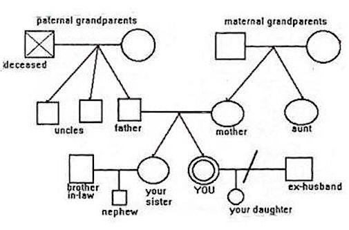 3 generation genogram template