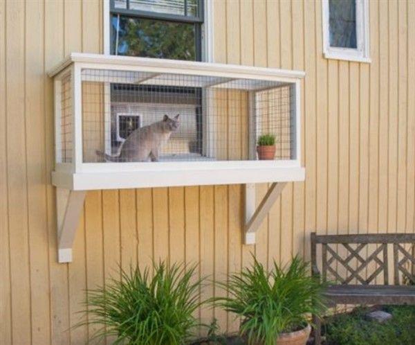 3 Safe Window Ideas For Cats Window Box Cat Solarium Window Sill Perch Unique Balcony Garden Decoration And Easy Diy Ideas Window Box Window Boxes Diy Window Sill