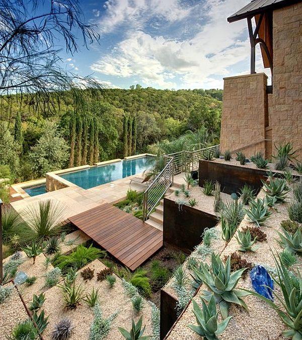hillside landscaping and infinity pool - Sonoran Desert