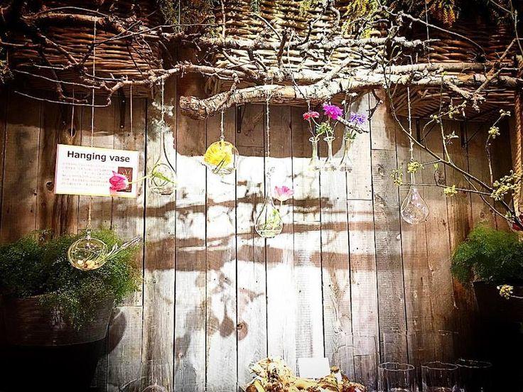 こんな厨房にしたい  #cucina  #artigiano #cultura #trucco #cuoco #laculturaalimentare #eclissi #cena #pranzo #cucinaitaliana #ristoranteitaliano #Trattoria #tradizione #passione #slowfood #piattitradizionali #cucinaregionale #Culturaitaliana #noi #giapponese #Tokyo #città #sangenjaya #ristoranteitalianoaTokyo #capocuoco #厨房 #ウッド #木 #話 #花   | 三軒茶屋のイタリアン「ペペロッソ(PepeRosso)」(パスタ・郷土料理・ワイン)