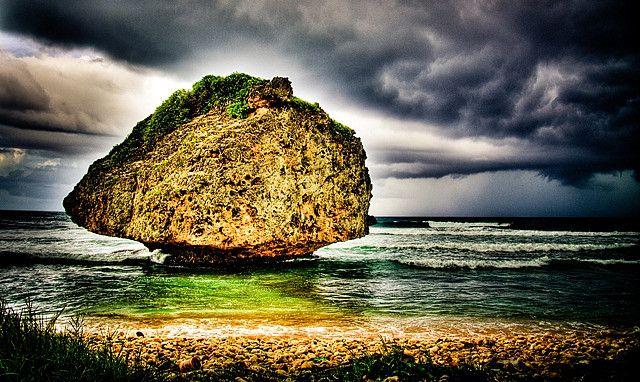 50 Best Beautiful Barbados Images On Pinterest: Mushroom Rock At Bathsheba, Barbados