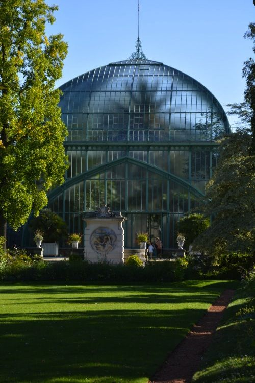 Serres d'Auteuil, Palmarium, Jardin botanique de la Ville de Paris, Paris XVIème.
