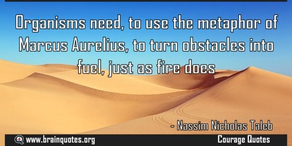 Organisms need to use the metaphor of Marcus Aurelius to turn obstacles  Organisms need to use the metaphor of Marcus Aurelius to turn obstacles into fuel just as fire does  For more #brainquotes http://ift.tt/28SuTT3  The post Organisms need to use the metaphor of Marcus Aurelius to turn obstacles appeared first on Brain Quotes.  http://ift.tt/2eDmEgF