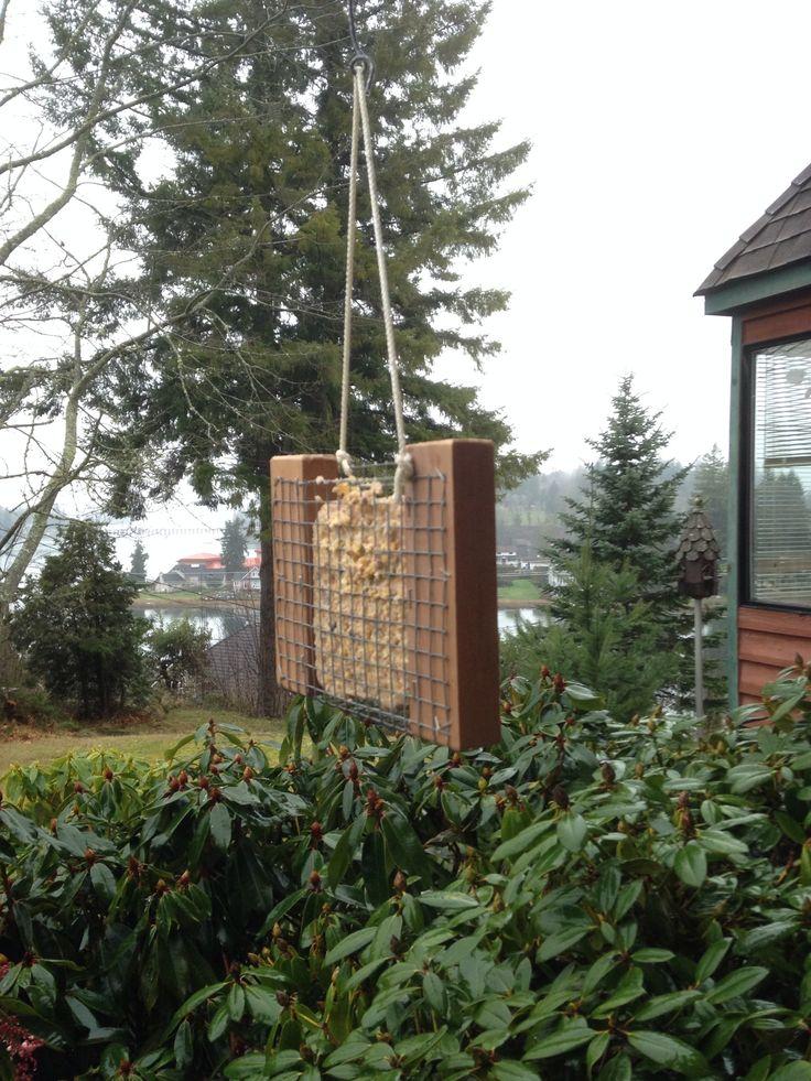 How to make your own suet holder recipe bird feeder for How to make suet balls for bird feeders