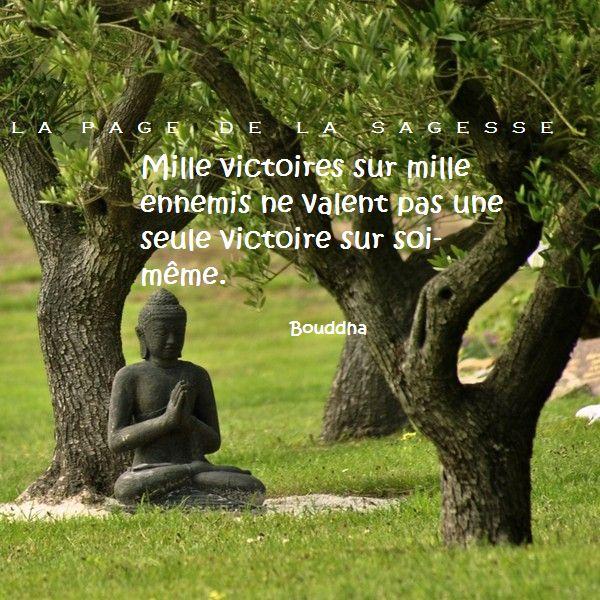 Sehr Les 57 meilleures images du tableau citations de Bouddha sur  JE22