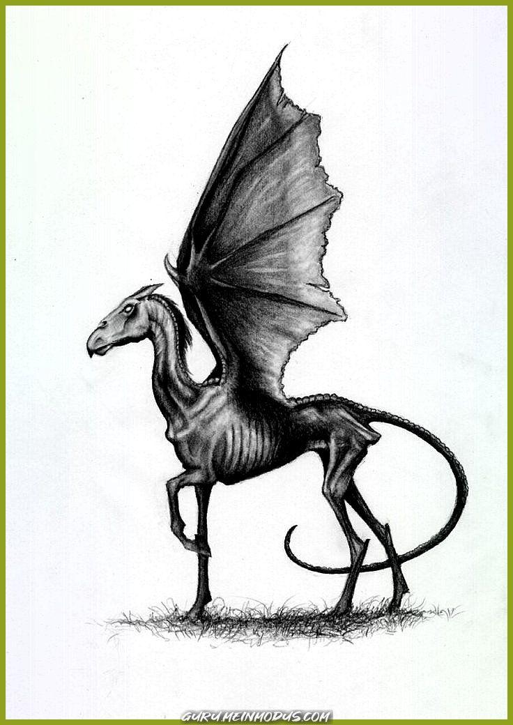 Guru Meinmodus Com Tattoo Zeichnungen Tatowierungen Fur Frauen Tattoo Skizzen Minimalistische Tattoos Geometrische Tattoos Aquarell Tattoos Harry Potter Tattoos Fanart Harry Potter Phantastische Tierwesen