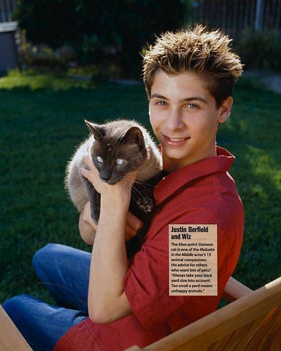 Justin Berfield with his blue point Wiz | Celebrity ...