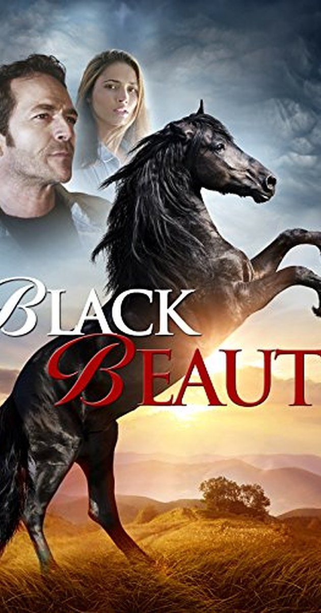 "Directed by Daniel Zirilli. With Luke Perry, Bruce Davison, Sarah Ann Schultz, Anthony Del Negro. ""Black Beauty,"" a film centering on a 15 year-old girl who volunteers at a city pound, and convinces her Grandfather in the country to adopt a horse that was rescued from an abusive owner. They spend the summer rehabilitating ""Black Beauty."""