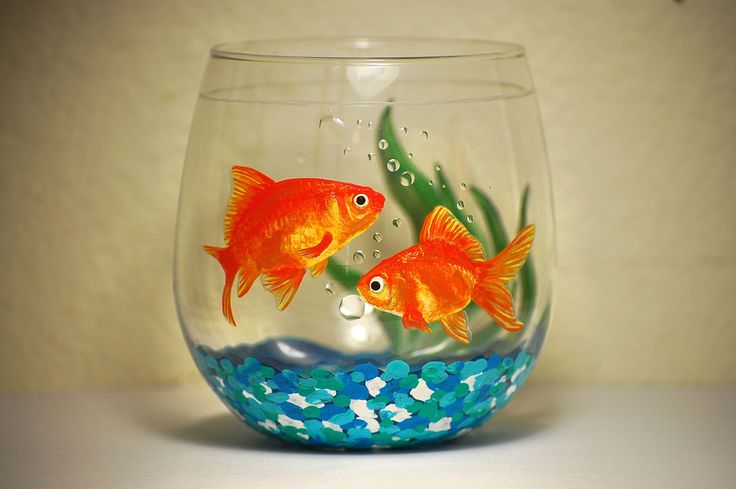 25 best ideas about painted wine glasses on pinterest for Fish tank paint