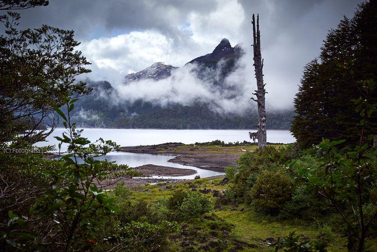 El Parque Nacional Hornopirén forma parte de la Reserva de la Biósfera Bosques Templados Lluviosos de Los Andes Australes, se ubica 120 kms al sur de Puerto Montt en los primeros tramos de la Carretera Austral junto al poblado del mismo nombre. El area es de una belleza escenica extraordinaria las altas y empinadas cumbres nevadas se juntan con el mar dando origen a bello fiordos. Entre los mayores atractivos del parque se encuentra el Volcan Yates, el Volcan Hornopiren, los Saltos del Ri...