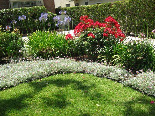 Google Image Result For Http Www Rose Gardening Made 400 x 300