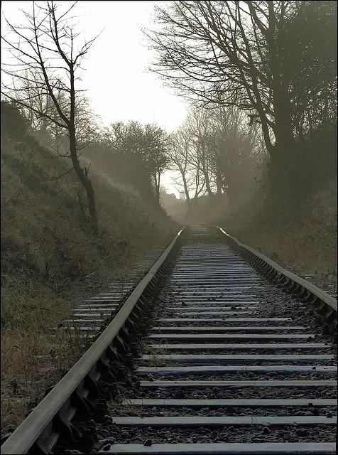 """14.Een dag eerder had Robin niet enthousiast meegewerkt dus Dave nam hem mee naar het treinspoor. """"Kijk naar de rails, ze zijn met z'n tweeën. Die rails dragen de trein naar zijn bestemming. Als er één ontbreekt, komt de trein nergens. Als de afstand tussen de rails niet overal even groot is, dan ontspoort de trein. Jij en ik, zijn de rails die samen onze liefde dragen en verder voeren. En zoals de rails onderhouden worden, zo moet jij ook werken aan onze relatie."""""""