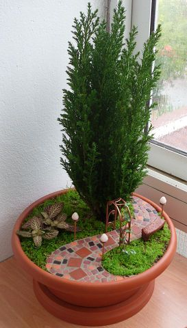 fairy gardens or miniature gardens can be made just about anywhere. Great use of a conifer to bring it all together