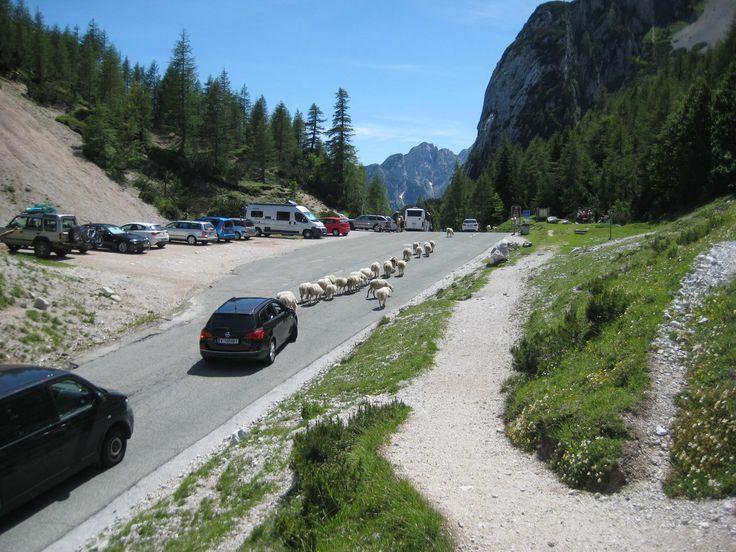 A traffic jam in Slovenia