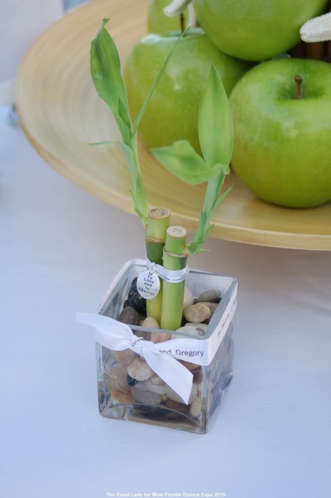 As a major trained bamboo advocate this is a must have x Mini plant x Desk life