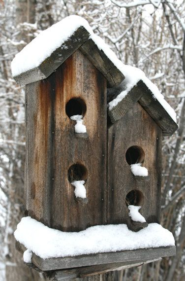 Bird Houses Lamoille NV by ThePhotoImpression on Etsy, $10.00