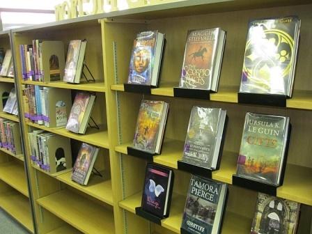 Genre classification slideshow from Maribel Castro, librarian at Coronado High School in Texas.
