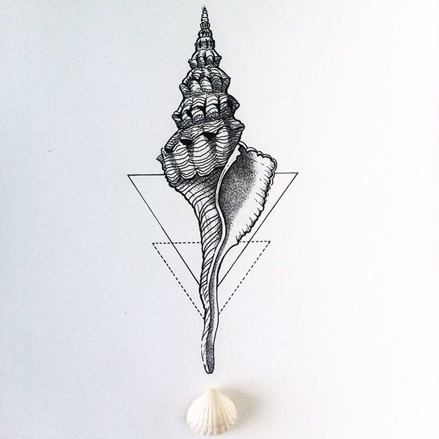 Magic shell. Done. Сделан #tattoo #dashatattooer #tattooart #shelltattoo…