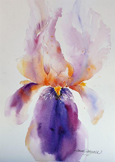 Iris Royalty