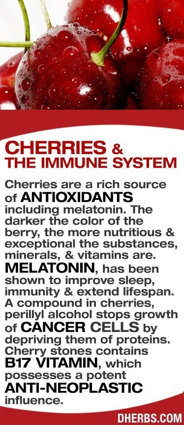 Cherries are a rich source of antioxidants including melatonin. The darker the color of the berry, the more nutritious & exceptional the substances, minerals, & vitamins are. Melatonin, has been shown to improve sleep, immunity & extend lifespan. A compound in cherries, perillyl alcohol stops growth of cancer cells by depriving them of proteins. Cherry stones contains   B17 vitamin, which possesses a potent anti-neoplastic influence. #dherbs by violet0321