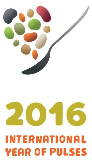 26 best international year of pulses 2016 images on pinterest click logo to download it from the uns iyp2016 site fandeluxe Images