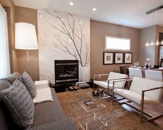 Living Room Design, Pictures, Remodel, Decor and Ideas - page 37