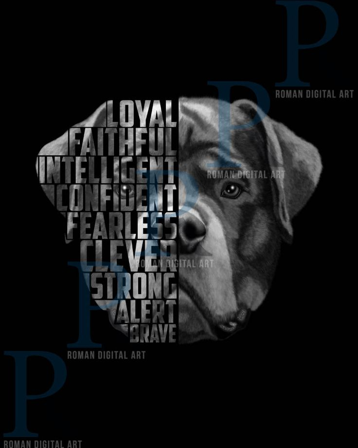 Excited to share the latest addition to my #etsy shop: Rottweiler Print, Rottweiler Text Portrait, Rottweiler Poster, Dog Portrait, Rottweiler Gift Download here: http://etsy.me/2GLY4oC #art #print #digital #rottweilerprint #rottweilerposter #dogportrait #rottweiler