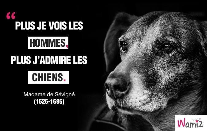 """""""Plus je vois les hommes, plus j'admire les chiens"""" - Madame de Sévigné."""