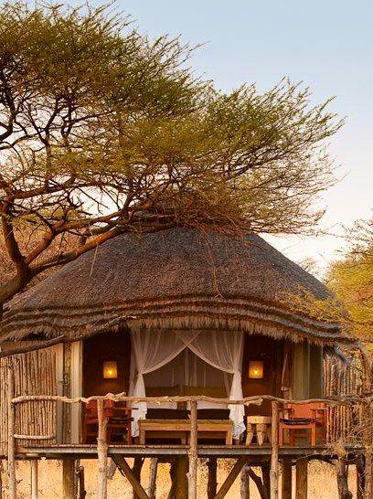 Onguma Treetop Camp - Etosha National Park, Namibia- best safari destinations