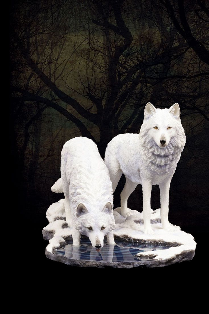 Warriors of Winter. Diese schneeweißen Winterboten haben trotz Frost & Eis eine Wasserstelle aufgetan. Die friedliche Szene mit zwei #Wölfen aus der Feder der britischen Künstlerin Lisa Parker ist verblüffend lebensecht gestaltet. #fantasy #figuren