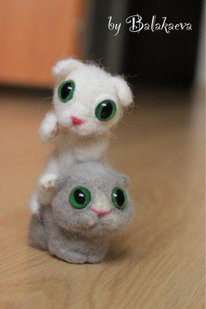 Котята.котенок.kitten.grey.white.green eyes.зеленые глаза.белый.серый