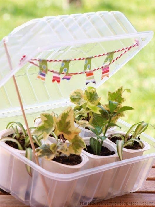 1000 ideas about homemade greenhouse on pinterest - Como hacer un invernadero pequeno ...