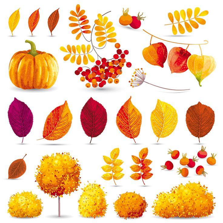autumn, fall, printables, pumpkin, осень, осенние листья, рябина, тыква, для печати, для вырезания